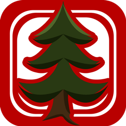 Christmas Light Show icon